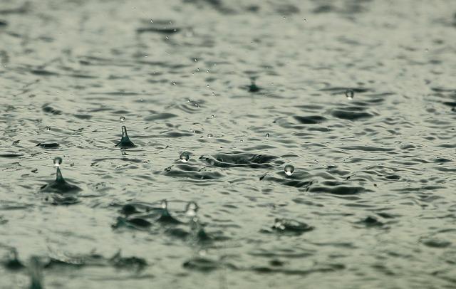 雨 photo